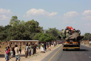 Movingelephantsandcrowd