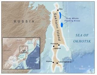 Sakhalin_Island_New_7-2-2009
