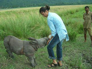 IFAW-WTI's Dr. Phulmoni Gogoi bottle feeding rhino calf