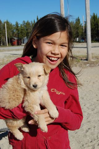 IFAW Canada: Northern Dogs – Back on the Trail with June Clinic Work – PT II
