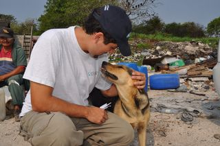 Cozumel Dump Dogs and Cats Facing Eviction and Homelessness